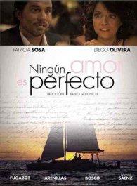 Ningún amor es perfecto